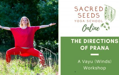 A Vayu Workshop: Exploring the 5 Directions of Prana